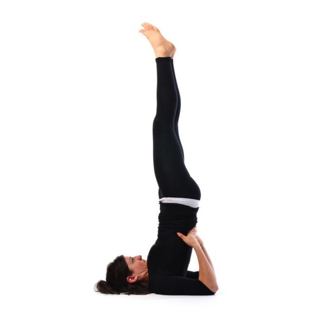 sarvangasana yoga india foundation