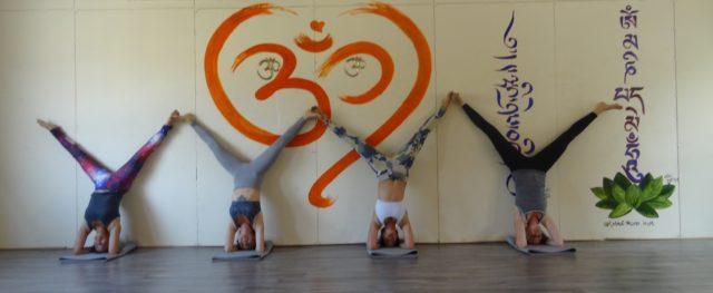 yogalehrer ausbildung in indien rishikesh