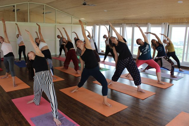 The 5 Best Online Yoga Teacher Training Courses Worldwide ...